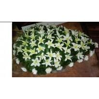 Coroana  funerara crin si crizantema