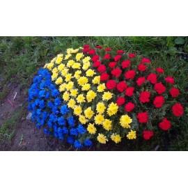 Coroana  funerara  tricolor