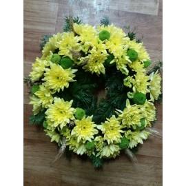 Coroana  crizanteme si indicum