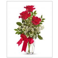 Buchet 3 trandafiri si plante ieftin