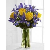 Buchet  10 fire de  iris  si 5 trandafiri