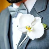 Cocarde naturale orhidee alba