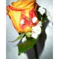 Cocarde flori naturale