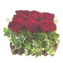 Cos 9  trandafiri