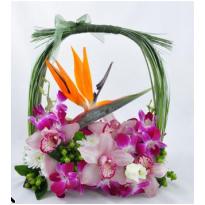 Cos cu orhidee si strelitia