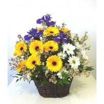 Cos  cu iris gerbera crizanteme