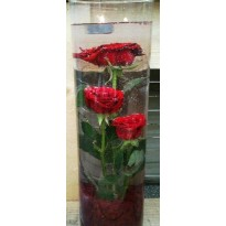 Tub sticla cu trandafiri