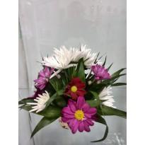 Cosulet crizanteme