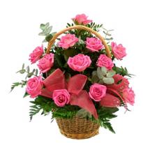 Cos trandafiri si plante