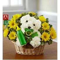 Cos catelus din flori
