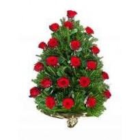 Jerba 20 trandafiri