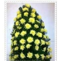 Jerba mare 40 crizanteme