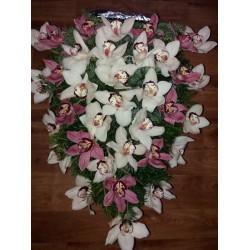 Jerba orhidee
