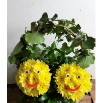 Aranjament  cu doi smiley face