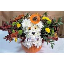 Aranjament floral  in dovleac
